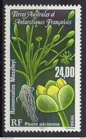 T.A.A.F   1999  Flore    Cat Yt   N° 244     N**  MNH - Terres Australes Et Antarctiques Françaises (TAAF)