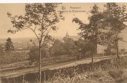 CPA - Belgique - Rossignol - La Route De Breuvannes - Belgique
