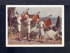 "1954. The USSR. Crimea. Camp ""Artek"". The Music. Sea. Flora. Pioneers. B.N. Romanov. 45. - Other"
