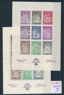 Belgien Block 9 A+B  **   (zu1063  ) Siehe Scan - Blocks & Kleinbögen 1924-1960