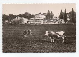- CPSM MALMOISSON (04) - Château D'Aiglun - Editions MIC 6573 - - Autres Communes