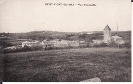 CPA 17 -- PETIT NIORT -- Vue D' Ensemble - Ile De Ré
