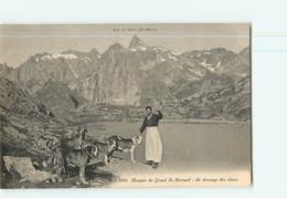 LOT De 10 CPA - HOSPICE Du Grand Saint Bernard : Dressage Des Chiens, Vue Générale , Etc... - 10  Scans - VS Valais