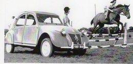 Citroen 2CV De 1949 Avec Cheval  -  CPM - Voitures De Tourisme
