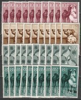 10x Ifni 1960, Farm Animals (MNH, **) - Stamps