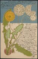 Ansichtskarte Flora Pflanzen Löwenzahn Pusteblume Sehr Schöne Farben - Illustratoren & Fotografen