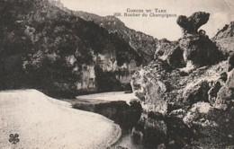 ***  82  ** Gorges Du Tarn Le Rocher Du Champignon -  Neuve TTB - France