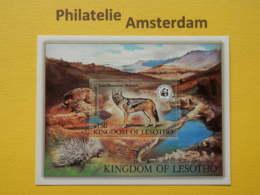 Lesotho 1981, WWF FAUNA ENDANGERED SPECIES MAMMALS ZOOGDIEREN: Mi 366, Bl. 12, ** - W.W.F.