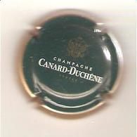 CAPSULE DE MUSELET CHAMPAGNE CANARD DUCHENE (blanc Et Or Sur Vert Bouteille) - Canard Duchêne