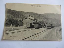 Cpa 04  Basses Alpes MEZEL La GARE Train Des Pignes - France