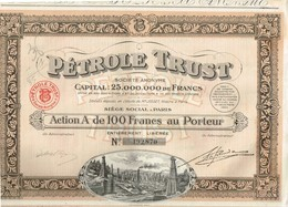 Action Ancienne - Pétrole Trust - Société Anonyme - Titre De 1924 - N°073.653 - Pétrole