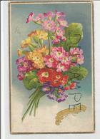 Bouquet De Primevères. Dorée. - Fleurs