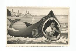 Croatia RAB ARBE Shark Attack Photo Montage Surrealisme Real Photo 1955 - Photographs
