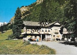 1199 - Viaggiata Nel 1980 - Gressoney St. Jean - Pensione Beau-Site - - Italia