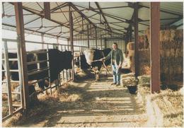 MUTH -1990 - COLLECTION 91/56 - 300 EX - Frankreich