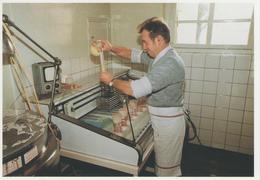 MUTH -1990 - COLLECTION 91/62 - 300 EX - Frankreich