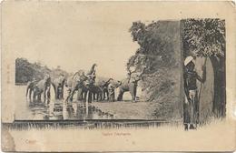 SRI LANKA - CEYLON ELEPHANTS - Ceylan - Troupeau D'éléphants Avec Hommes - Statue D'homme - Sri Lanka (Ceylon)