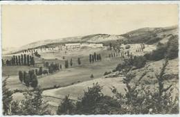 Masméjean-Enfance Ouvrière Nîmoise Au Grand Air-La Forêt De Hêtres (CPSM) - Other Municipalities