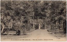 CPA 44 - LA BAULE (Loire Atlantique) - 17. Parc Des Dryades - Avenue D'entrée - Ed. F. Chapeau - La Baule-Escoublac
