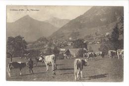 21877 - Château-d'Oex Au Pâturage Vaches - VD Vaud