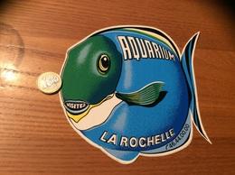 AUTOCOLLANT, Sticker « VISITEZ AQUARIUM - LA ROCHELLE (17)» (poisson) - Autocollants