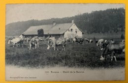 8585 -  Le Brassus Chalet De La Bursine Vaches - VD Vaud