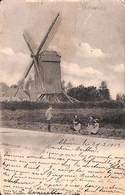 Moulin De Chièvres Ou Moulbaix (1902, Animée) - Chièvres