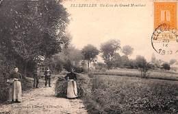 Ellezelles - Un Coin Du Grand Monchaut (Ed. Moreau Lietard, Animation, 1913) - Ellezelles