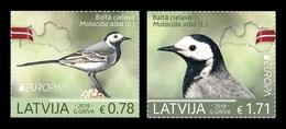 Latvia 2019 Mih. 1072/73 Europa. National Birds. Fauna. White Wagtails MNH ** - Lettonie