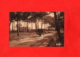 F0205 - Avenue De La Forêt De SION Sur OCEAN - 85 - Andere Gemeenten