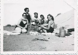 PIN UP WOMEN FEMMES - Ladies S Nude In Swimsuit Sat Together Picnic Pique Nique Beach Photo Snapshot 8x6 1940' - Pin-Ups