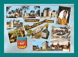 16 Charente Pays Du Cognac Et Du Pineau ( Multivues Chateaux, Vendanges, Chaix, Multivues ) - Ohne Zuordnung