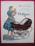 PEDIGREE PRAM. 0RIGINAL 1955 MAGAZINE ADVERT - Sonstige