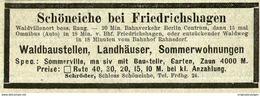 Original-Werbung/ Anzeige 1903 - WALDHÄUSER SCHÖNEICHE BEI FRIEDRICHSHAGEN - Ca. 100 X 35 Mm - Pubblicitari