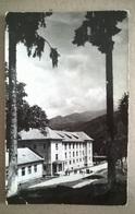 CACIULATA CLUBUL (199) - Romania