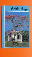 Anguilla.Flamboyant Tree And Old House - Altri
