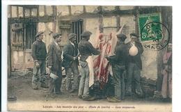 Dépeçage Du Cochon Dans Les Landes - Breeding