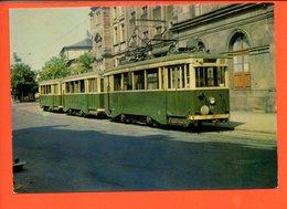 Chemin De Fer - Tramways De Saint Etienne (Publicité Amora) - Tramways