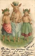 COCHON HABILLES - Carte Illustrée. - Cochons