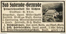 Original-Werbung/ Anzeige 1928 - BAD SUDERODE / GERNRODE - Ca. 55 X 30 Mm - Werbung