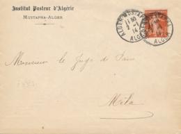 "Lettre à En-tête "" INSTITUT PASTEUR D'ALGERIE "" Mustapha Alger Affrt SEMEUSE 138 Obl "" ALGER MUSTAPHA 2/1/14 - Louis Pasteur"