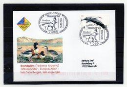 BRD, 2004, Brief (echt Gelaufen) Mit Michel 2393 Und Sonderstempel, Brandgans - Covers