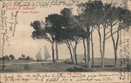 Cartoline Ravenna Dintorni Canale Naviglio 1909 - Italia
