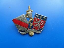 Ecole Du Service De Santé LYON ,insigne Santé , Insigne , Drago Marne La Vallée - Hueste