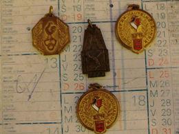 Lot De 4 Médailles De Sport 2 F.C.R  Champion Minimes 1964/1965 Et 1965/1966 - 1 O.S.R  De 1966 -et 1 Athlétisme - Le To - Other