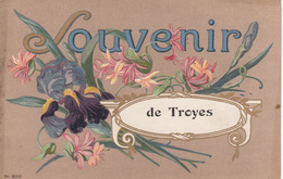 10 - TROYES - Souvenir - Troyes