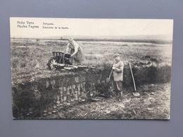 Hohe Venn - Hautes Fagnes - Torfgrube - Extraction De La Tourbe - Agriculture - Landbouw - Belgique