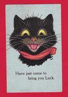 CPA Chat Noir Comique Cat Black Comic 1924 - RARE - Chats