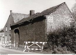ZONHOVEN (Limburg) - Molen/moulin - De Gewezen (rosmolen-) Hoeve Van Willems (olierosmolen) Kort Voor De Sloop In 1970 - Zonhoven