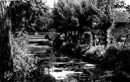 Cpsm(33)-- Pont De La Maye  Le Pont Sur La Route De Toulouse.. - Autres Communes
